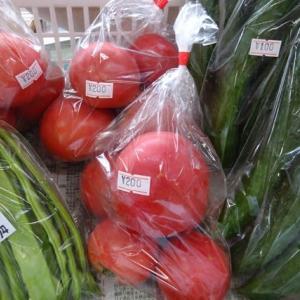 国道413号(通称道志道)~無農薬・野菜直売所 タカギの畑本日もオープン