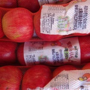 陽光・ぐんま名月・王林 入荷しました ~ 相模原市 地場産リンゴ