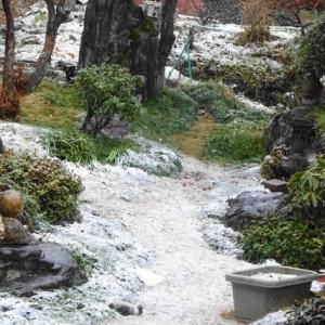 国道413号  ~ 店の前には雪はありません