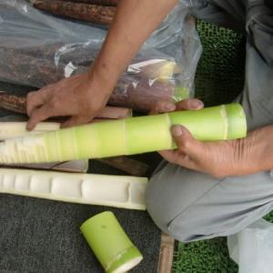 真竹 ・・地場産採りたて  相模原市・緑区 高城商店