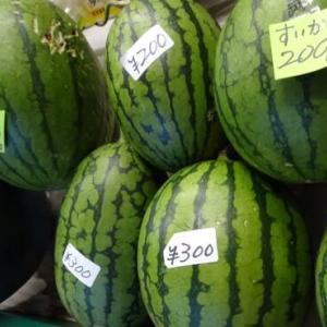直売所「タカギの畑」~国道413号  夏野菜100円~150円