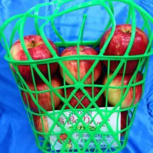 つがるリンゴ