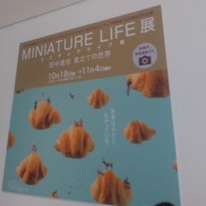 MINIATURE LIFE展♪田中達也見立ての世界&5×20嵐の世界~睡蓮、柳の反映