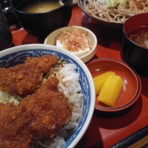 福井といえば♪蕎麦&ソースカツどん!~難波津に咲くやこの花冬ごもり