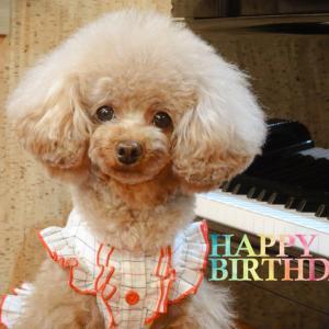 My Birthday ♬+°・♥*.