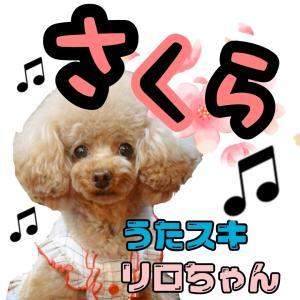 「さくら」歌ってみました♬*.+゜