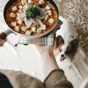 おどろくほど簡単♡犬用和風パエリア(手作り犬ごはんレシピ)