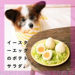 おうちで簡単犬おやつ♡イースターエッグのポテトサラダ
