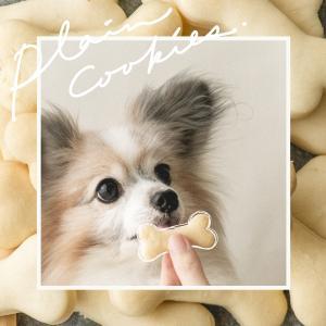 犬の手作りクッキー、薬を混ぜて焼いても大丈夫?