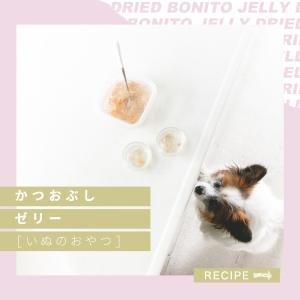 水分補給にも◎犬のためのかつおぶしゼリーの作り方(手作り犬おやつレシピ)