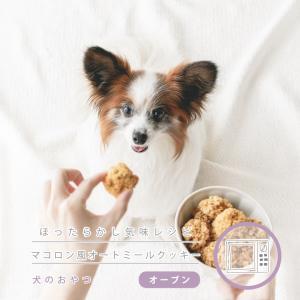 肌の健康への期待大の食材!オートミールで作る犬のクッキー(手作り犬おやつレシピ)