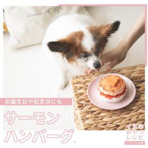 犬の誕生日にもおすすめ◎サーモンのハンバーグレシピ(いぬのきもち掲載 手作り犬おやつレシピ)