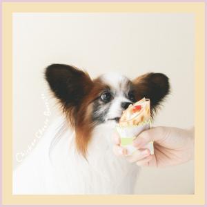 鶏肉&チーズ!定番食材で犬のブリトーを作ってみる(手作り犬おやつレシピ)