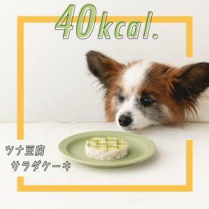 【40kcal】豆腐とマグロの簡単ケーキ&おしゃれきゅうり乗せ。