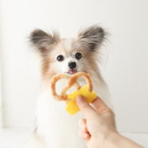 オーブン不要の犬おやつ☆豚肉スパゲッティで作る、生地をこねないプレッツェル