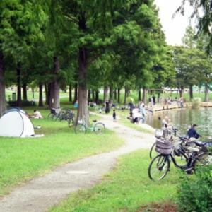 舎人公園大池