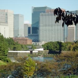 憲政記念館庭園2