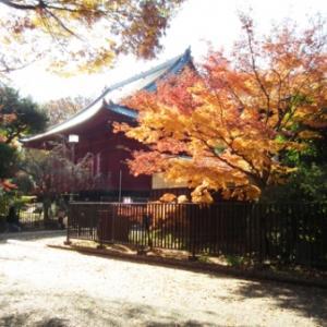 上野公園擂鉢山