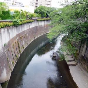 石神井川(音無川)