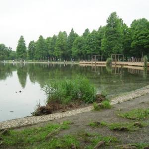 舎人公園 3