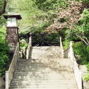 飛烏山公園