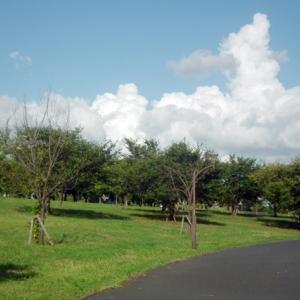 舎人公園 2