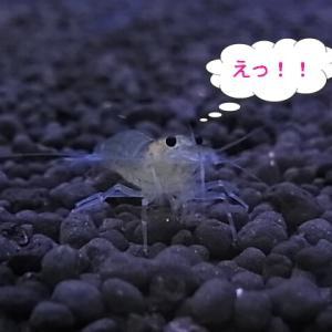 ちょいパニック・・・(・_・;)