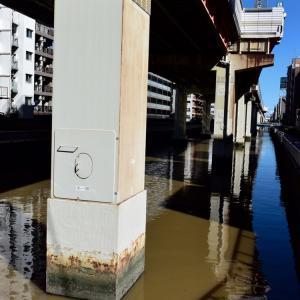 竪川(たてかわ)の川面、首都高7号線が上を走る、台風19号通過の後は