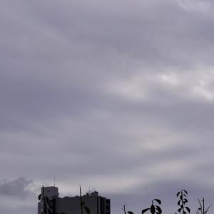 朝8時の東の空、週末に台風20号がやってきた、曇りが続いた10月15日から21日