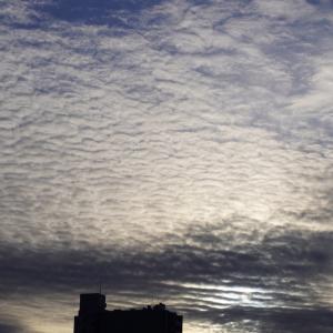 朝8時の東の空、3月中旬の日があったかと思えば日中は3度もあった1週間