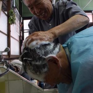 日下部理容店、日下部善夫さん、昭和の香りの理容店、墨田区緑1丁目、女性が顔剃りにやって来る!