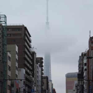 浅草散策、東京スカイツリー、リスボン、最新浅草みやげ、仲見世商店街、ショーウインドウ