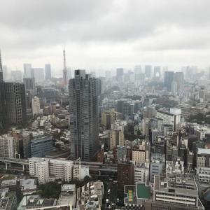 東京ミッドタウン、霞む東京タワー