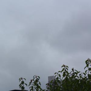 朝8時の東の空、最高気温32.6度の真夏日もあれば19.8度の寒い日もあった1週間