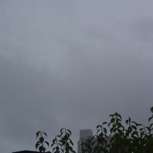 朝8時の東の空、梅雨が本格的の1週間、真夏日が1日しかなかった