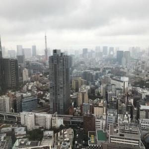 東京ミッドタウン、34階からの眺望、東京タワー、新国立競技場、秩父連山?!
