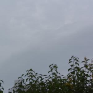 朝8時の東の空、夏日が戻り真夏日が1日あった、2日連続であった祝日!