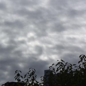 朝8時の東の空、ほとんど曇りの日が続いた1週間、夏と秋の合間の曇り?!