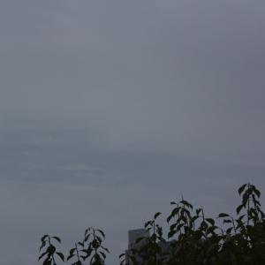 朝8時の東の空、真夏日がない!、夏日が火曜日だけだった、秋の気配、気象予報士、南利幸