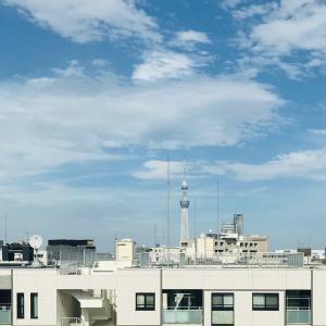 """""""Rawtus""""2021春夏展、佐藤ヒサコさん、嶋崎隆一郎さん、ニューゴートレザー"""