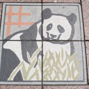 上野でパンダ!、路上にもパンダ公園にもおにぎり専門店にもパンダがあふれている