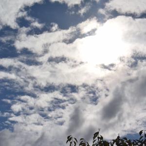 朝8時の東の空、夏日に始まり真夏日が2日もあった6日間の後はどんよりした曇りで終わった