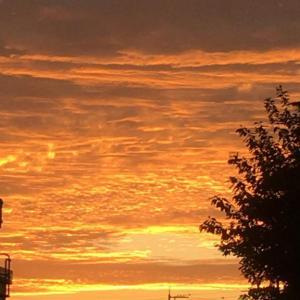 黄金の日の出