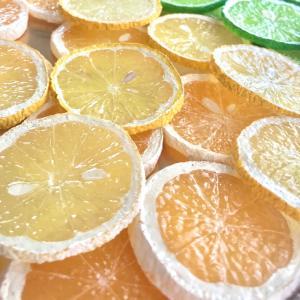 柑橘類 作ってます