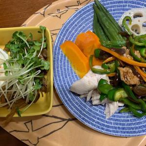 野菜を大量に食べて(食物繊維増やして) 痩せる作戦開始しました