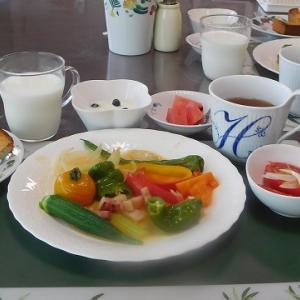 彩り野菜の蒸し煮ンバターソース