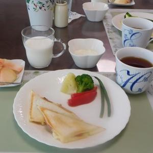 ホットサンド2種、紫蘇ハムチーズとイタリアン