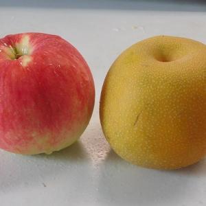 藤沢のリンゴのさんさ
