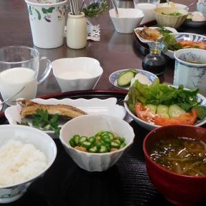 平塚のアジの干物