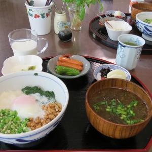 4色ネバネバ丼ともずくの味噌汁